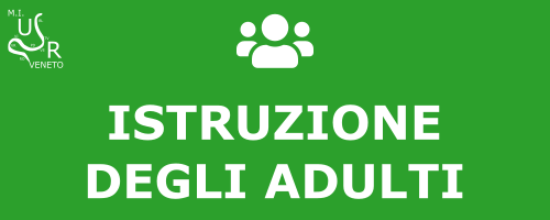 Istruzione degli adulti